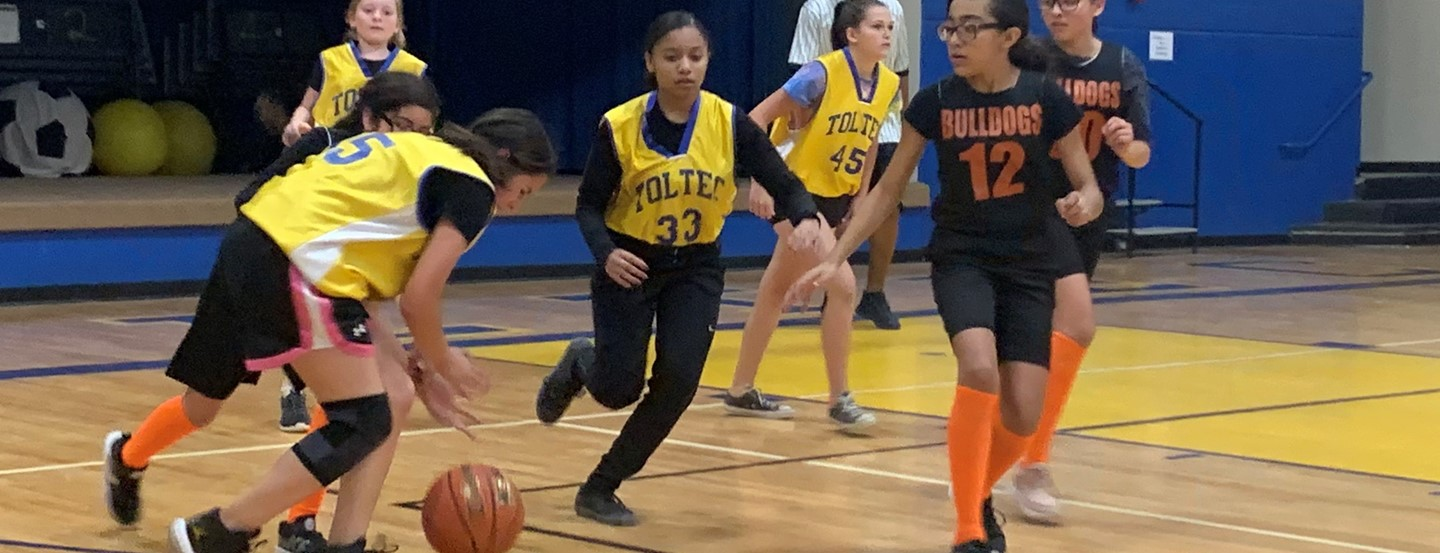 Girls Bulldogs and Tigers compete in Basketball